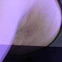 【高画質ワキフェチ動画】性器にしか見えない剃り残しのあるワキマンコを撮られちゃった激カワキャンギャル 東京オートサロン 2017